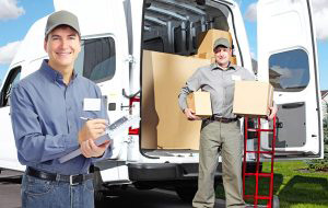 packing services in Bonnie Vale